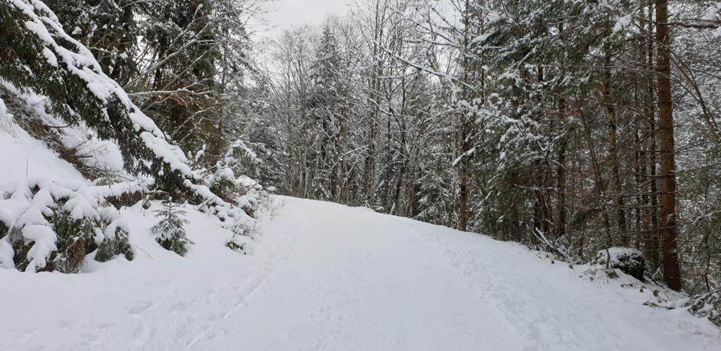 Wanderweg zur Kirchsteinhütte